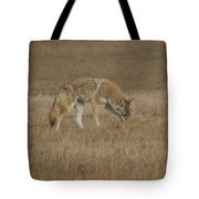 The Coyotes Tote Bag