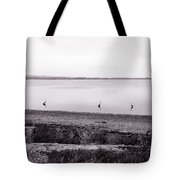 The Cranes In Line Tote Bag