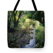 The Creek At Finch Arboretum 2 Tote Bag
