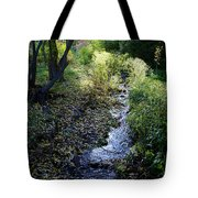The Creek At Finch Arboretum Tote Bag