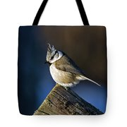 The Crested Tit In The Sun Tote Bag