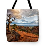 The Crooked Old Tree Tote Bag