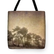 The Curved Tree Tote Bag