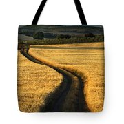 The Curved Way. Tote Bag
