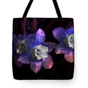 The Daffodil Trio Tote Bag