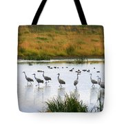 The Dance Of The Sandhill Cranes Tote Bag