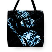 The Dappled Chairs Tote Bag