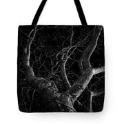 The Dark And The Tree Tote Bag