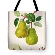 The D'auch Pear Tote Bag by William Hooker