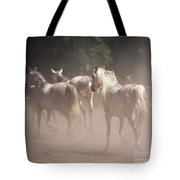 The Daughters Of The Desert Tote Bag