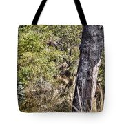 The Death Of A Tree V4 Tote Bag