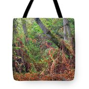 The Deep Rainy In The Mysterious Forest Tote Bag