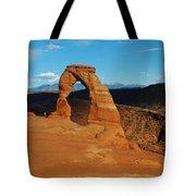 The Delicate Arch 10 Tote Bag