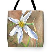 The Delicate Autumn Lady - Narcissus Serotinus Tote Bag