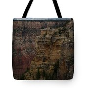 The Depths Of The Canyons Tote Bag