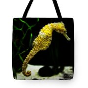 The Derby Tote Bag