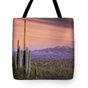 The Desert Beckons  Tote Bag