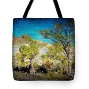 The Desert Tote Bag