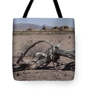 The Desert Floor Tote Bag