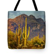 The Desert Golden Hour II  Tote Bag