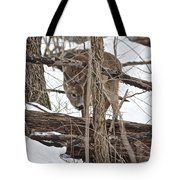 The Doe And The Snow - Odocoileus Virginianus Tote Bag