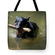 The Dog Days Of Summer Tote Bag