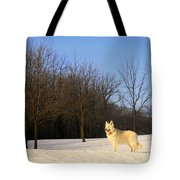 The Dog On The Hill Tote Bag