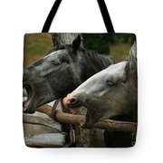 the double Yawn Tote Bag