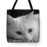 The Dreamer Cat Tote Bag