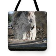 The Drinking Fountain Tote Bag