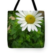 Natures Tear  Drops Tote Bag