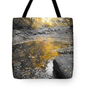 The Dry Creek Bed Tote Bag