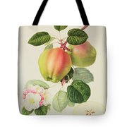 The Dutch Codlin Tote Bag by William Hooker