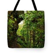 The Eagle Creek Trail Tote Bag