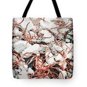 The Earthquake Worms Tote Bag