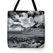 The Eastern Sierra Tote Bag