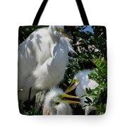 The Egret Family Tote Bag