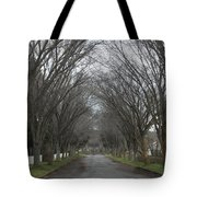 The Elm Arch Tote Bag