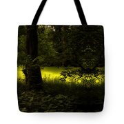 The End Of The Path Mirror Image Tote Bag