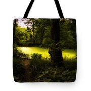The End Of The Path Tote Bag