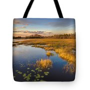 The Everglades Tote Bag