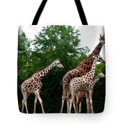 The Extended Family Tote Bag