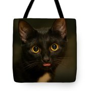 The Eyes Tote Bag