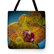 The Face Of Color Tote Bag