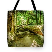 The Fallen Collection 10 Tote Bag