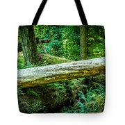 The Fallen Collection 12 Tote Bag