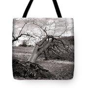 The Fallen Tote Bag