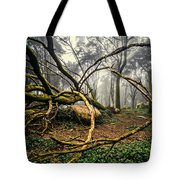 The Fallen Tree II Tote Bag
