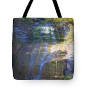 The Falls Tote Bag