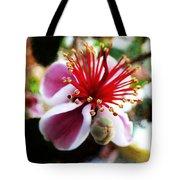 the Feijoa Blossom Tote Bag